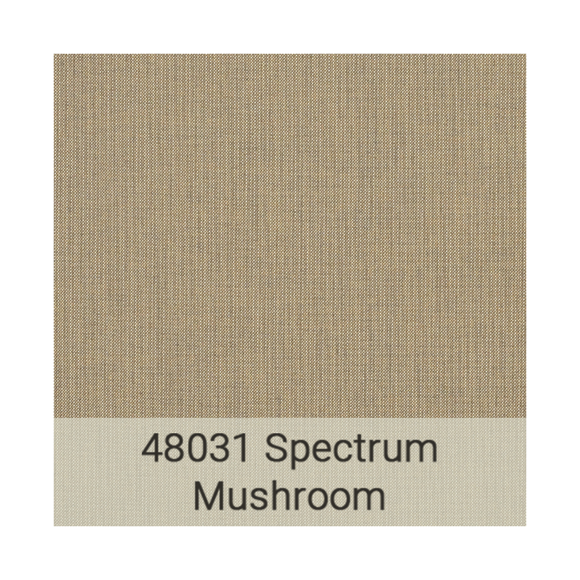 Kingston Casual Sunbrella gradeb-48031-spectrum-mushroom